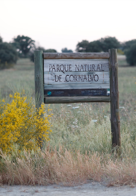 Fotos Parque Natural de Cornalvo